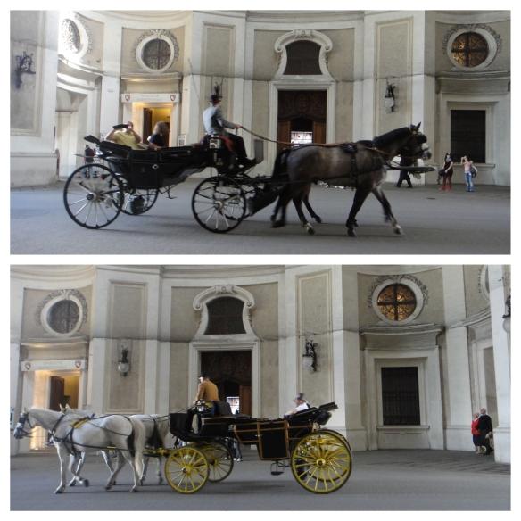 horse carriages - vienna - zoeticepics.com
